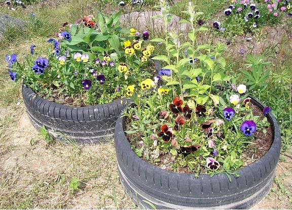 Як самостійно зробити клумбу для рослин і квітів?