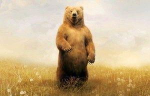 Мені сниться ведмідь! До чого б це?