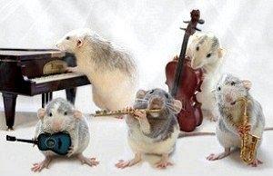 До чого сняться миші?
