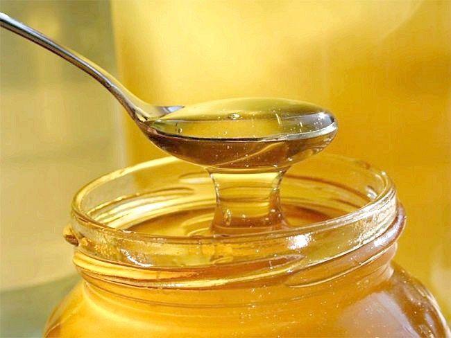 Де зберігати мед