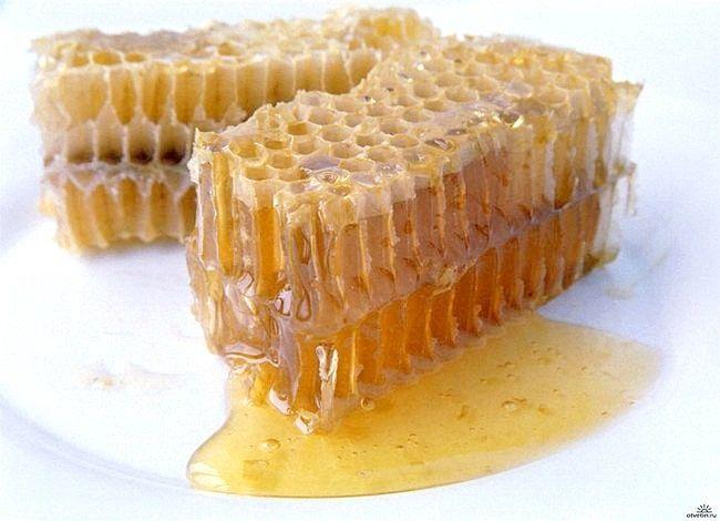 Як зберігати мед у стільниках