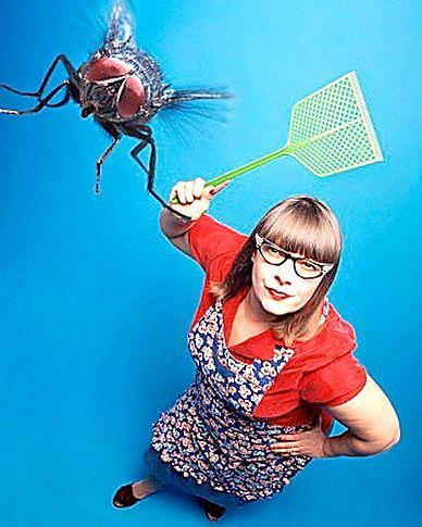 Як позбутися від мух швидко і ефективно?