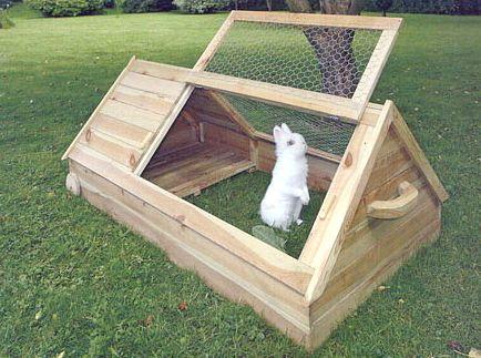 Як самостійно зробити клітку для кроликів?