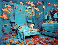До чого сниться риба?