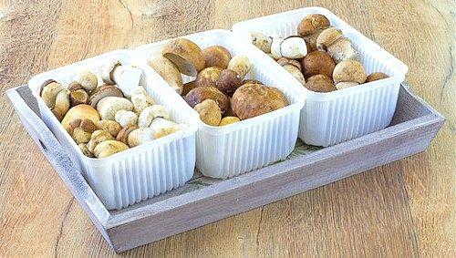 гриби в контейнерах